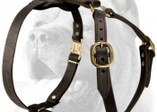 cane-corso-leather-dog-harness-tracking-walking-2-big